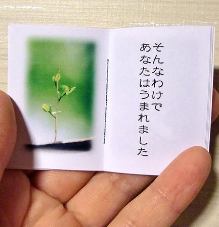 ひみつのてちょう3.jpg