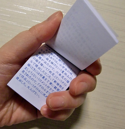 nakaのコピー.jpg