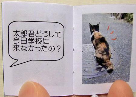 そ猫10.jpg
