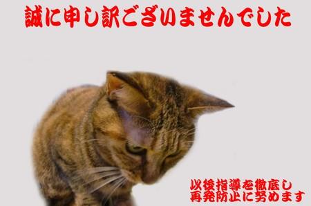 社長謝罪会見.jpg